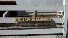 Animals may bite sign on pig pen Stock Footage