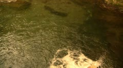 Beautiful Hawaii River Flow Into Pond - stock footage