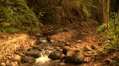 Beautiful Hawaii River - stock footage