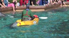 WorldClips-SeaWorld Dolphin Jokes Stock Footage