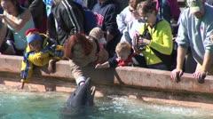 WorldClips-SeaWorld Feeding Dolphin Stock Footage