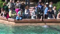 WorldClips-SeaWorld Lagoon People Stock Footage