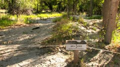 Area closed in Yosemite National Park Stock Footage