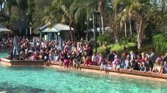 WorldClips-SeaWorld Lagoon-zoom Stock Footage
