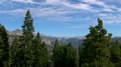 Trees and skyline in Yosemite National Park Stock Footage