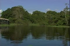 WorldClips-Entrance Jungle River-pov Stock Footage