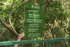 WorldClips-Jungle Walkway Sign Stock Footage