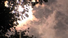 Smoke rising up past tree branches HD Stock Footage
