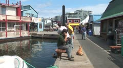 WorldClips-Fisherman's Wharf People and Seals Stock Footage