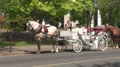 WorldClips-Horse Drawn Carriage Stock Footage