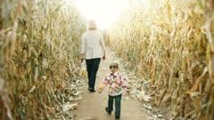 Corn maze fun Stock Footage