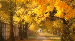 Autumn Scene Industrial Area 02 faling leaves and pedestrian Stock Footage