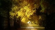 Autumn Scene Industrial Area 05 falling leaves and pedestrian stylized Stock Footage