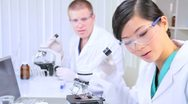 Medical Researchers Working in Hospital Laboratory Stock Footage
