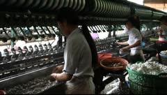 Vietnam_LDA N 00247 Stock Footage