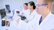 Three Research Assistants Working in Medical Laboratory Stock Footage