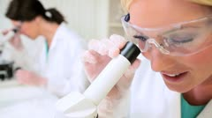 Female Research Assistants in Hospital Laboratory Stock Footage