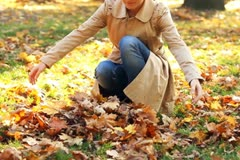 Stock Video Footage of Young happy woman throwing golden leaves in the air, slow motion