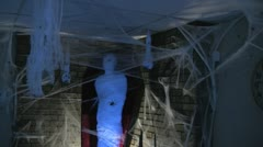 Halloween House Full of Decorations and Scary Spider webs and Skulls  Mummy i - stock footage