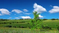 Spring landscape Stock Footage