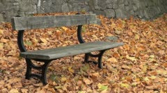 Autumnal Leaves and Bench Stock Footage