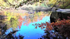 Autumn Reflections on a Small Pond Stock Video Stock Footage