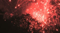 Red fireworks and tree Stock Footage