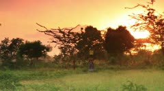 Woman carrying water at dawn in Kenya. Stock Footage
