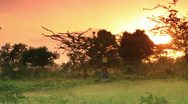Stock Video Footage of Woman carrying water at dawn in Kenya.