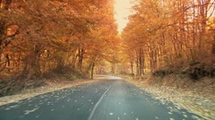 Fall in motion Stock Footage