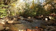 Oak Creek Rushing through Fall Colors 2 Stock Footage