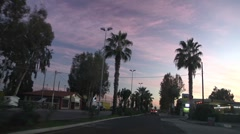 Palm Trees. Driving on Plaia of Catania. Stock Footage
