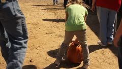 Girl struggling to carry a large pumpkin Stock Footage