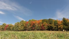 Beautiful fall day Stock Footage