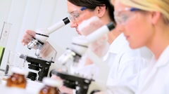 Medical Researchers Using Microscopes in Laboratory - stock footage
