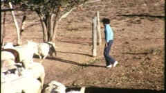 Indian USA Girl Herds Goats Navajo Reservation 1960s Vintage Film Footage 1234 Stock Footage