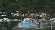 Beautiful Kodiak Island Harbor Stock Footage