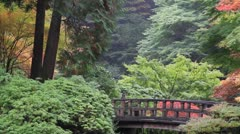 Wooden Footbridge with Maple Trees in Japanese Garden in Fall Season Stock Footage
