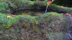Japanese Stone Bamboo Fountain with Basin in Fall Stock Footage