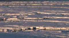 Frozen Ice Tidal Mud Flats pan right 1 Stock Footage