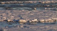 Stock Video Footage of Frozen Ice Tidal Mud Flats pan left 2