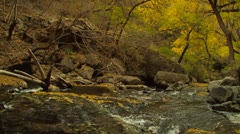 Late Autumn River Stock Footage