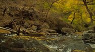 Stock Video Footage of Late Autumn River