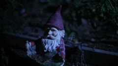 Moonlit Garden Gnome Stock Footage