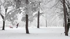 Winter park Stock Footage