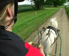 Shetland pony carriage driving on road over shoulder Stock Footage