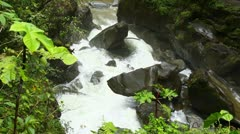 Mountain river in Ecuadorian rainforest Stock Footage