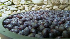 Ripe plums collected in barrels close up Stock Footage