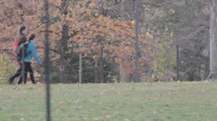 Stock Footage College Students in Fall - walking, colors, leaves blowing - stock footage
