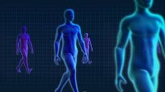 Medical 3D Graphic of a Virtual Walking Male Stock Footage
